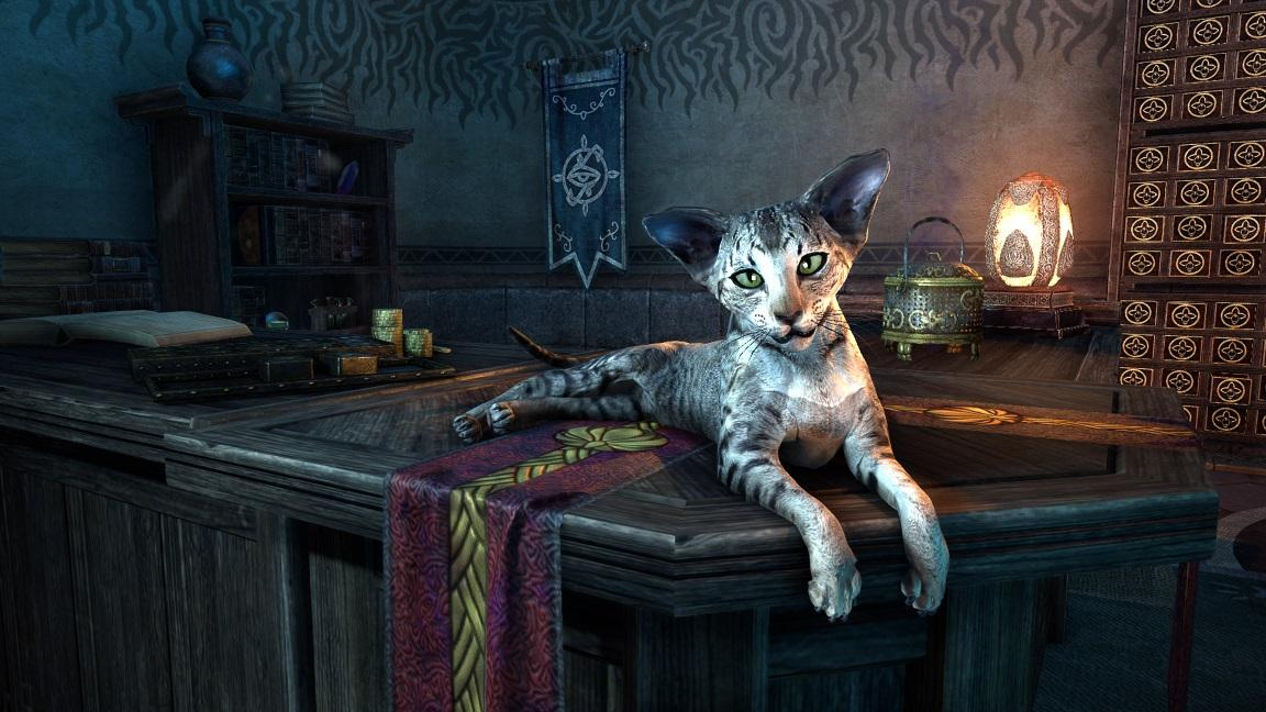 Mages Guild Sentry Cat pets