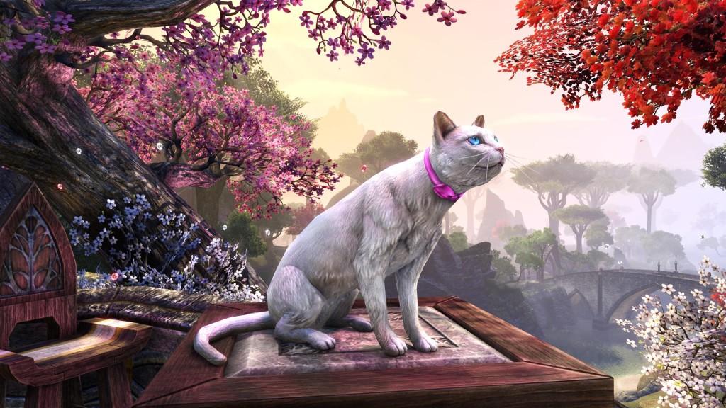 Milady's White Cat